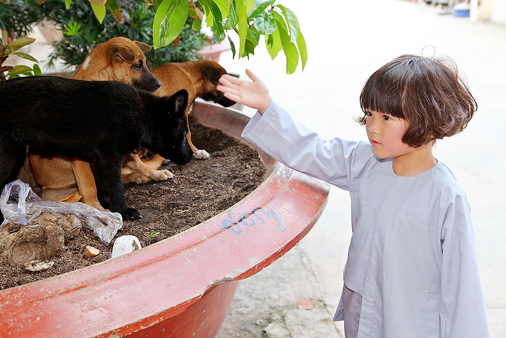 Con gái Thúy Nga vô cùng yêu thương động vật