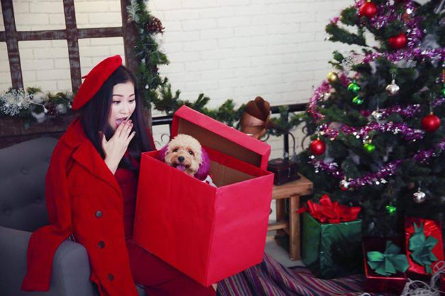 Kiều Linh vui đón giáng sinh sớm bên thú cưng!