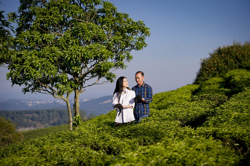 """Cặp đôi Lê Ngọc Trinh - Đỗ Minh Thông """"vẽ"""" cảnh đồi chè đầy thơ mộng"""