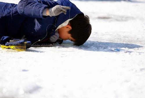 Bắt cá hồi bằng tay không trên sông băng Hàn Quốc