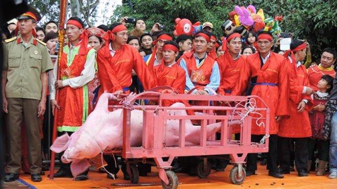 Kêu gọi chấm dứt lễ hội chém lợn ở Bắc Ninh