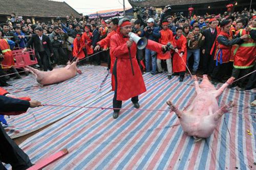 Dân Ném Thượng quyết không đổi tên lễ hội chém lợn