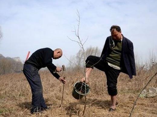 Trồng 10.000 cây xanh trong 10 năm dù không tay, khiếm thị