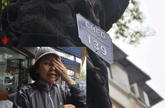 Người phụ nữ viết đơn xin giữ lại cây xanh trên phố
