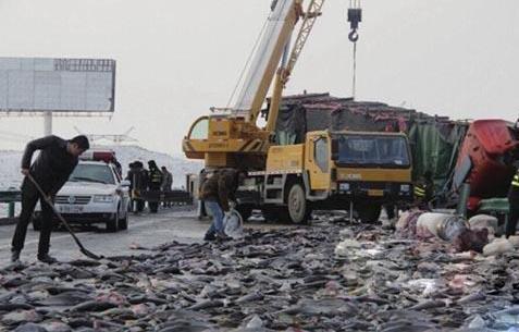 Xe chở 22 tấn cá bị lật, người dân lao ra hôi của