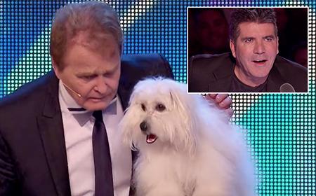Khán giả choáng váng với chú chó biết... nói và hát