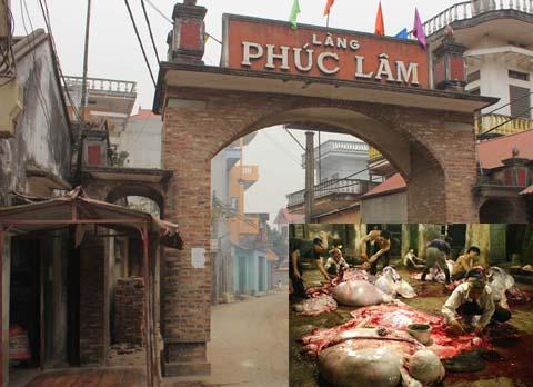Chuyện rùng rợn quanh lời đồn 'báo oán' ở làng mổ trâu ở Bắc Giang