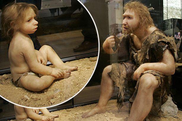 Bí ẩn người Neanderthal: Ăn thịt con cái để tồn tại?