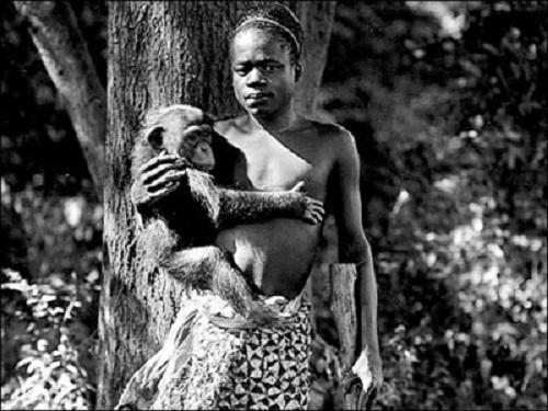 """Câu chuyện ám ảnh về những """"vườn thú người"""" ở Mỹ"""