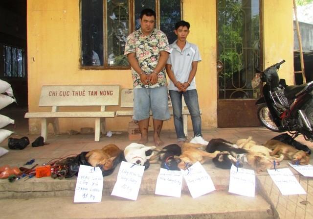 Hai 'cẩu tặc' bắn chết 7 con chó trong đêm