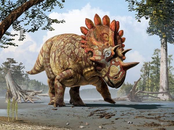 Phát hiện hóa thạch khủng long kì dị như quỷ đỏ Hellboy