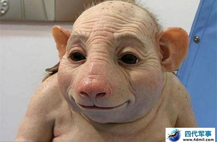Thực hư người lợn xuất hiện ở Trung Quốc