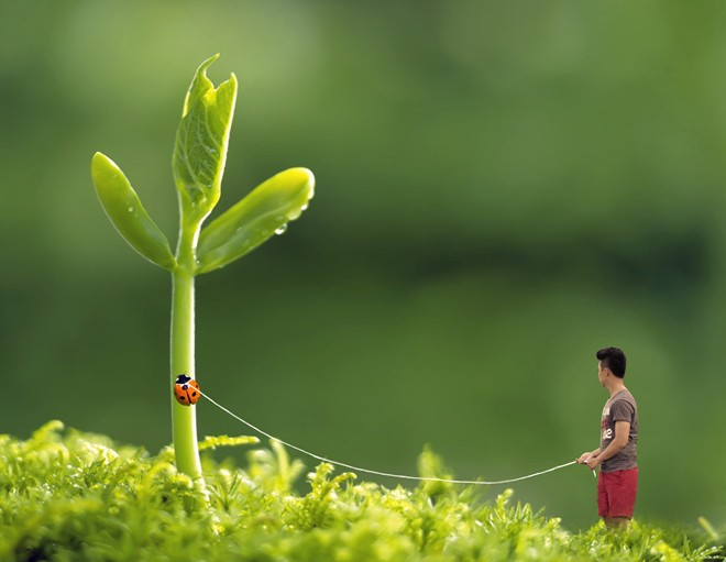 Bộ ảnh chàng trai cô đơn giữa cuộc đời rộng lớn