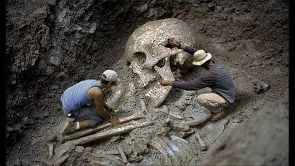 Những bộ xương khổng lồ gây tranh cãi nhất trong lịch sử