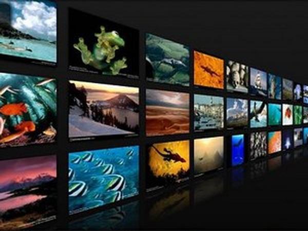 Tạo video slideshow trình diễn ảnh đẹp mắt với hiệu ứng chuyên nghiệp