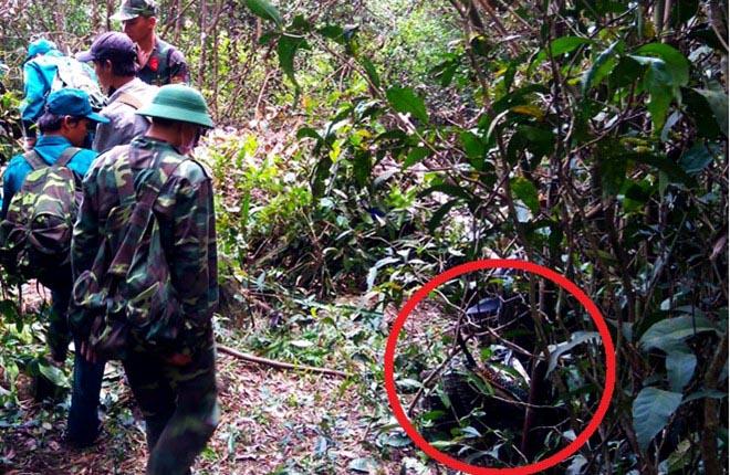 30 giờ băng rừng tìm máy bay trực thăng rơi ở Bà Rịa
