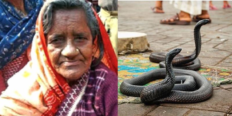 Mất mạng vì bị rắn cắn, bà cụ bỗng trở về từ cõi chết sau 40 năm