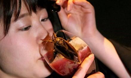Uống dịch côn trùng mừng lễ tình nhân