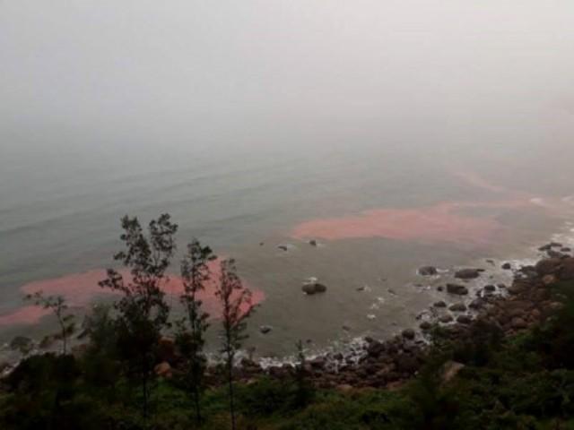 Lấy mẫu dải nước màu đỏ ven biển Lăng Cô