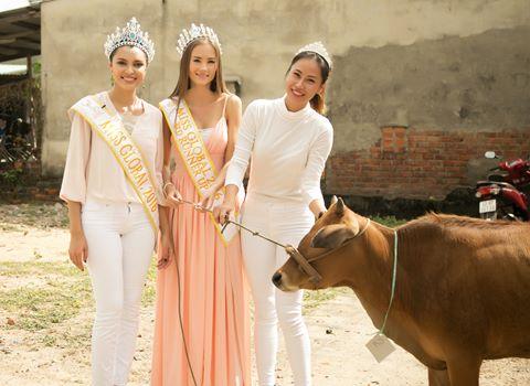 Hoa hậu Toàn cầu tặng bò cho dân nghèo Đà Nẵng