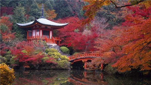 Những sự thật bất ngờ không phải ai cũng biết về Nhật Bản