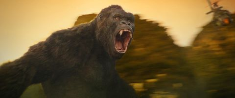 """""""Kong"""" sẽ được chiếu miễn phí cho người dân Ninh Bình, Quảng Bình"""