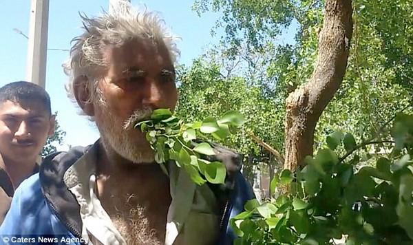 Vì nghèo, ăn mãi lá và cành cây thành... nghiện