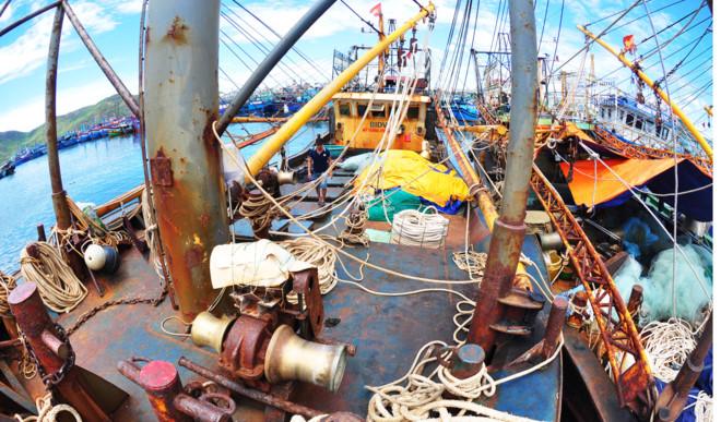 An ninh kinh tế vào cuộc điều tra vụ tàu cá vỏ thép chục tỷ nằm bờ