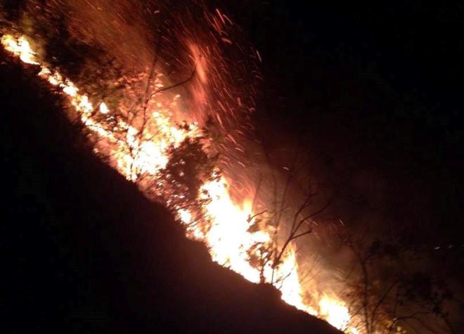 Rừng thông 30 tuổi ở Thanh Hóa cháy dữ dội trong đêm