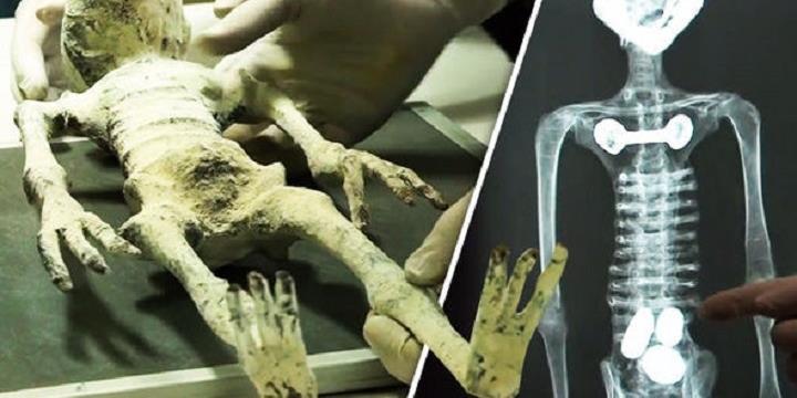 """Không chỉ tìm thấy xác ướp, người ta còn tìm ra cả """"bào thai ngoài hành tinh"""""""