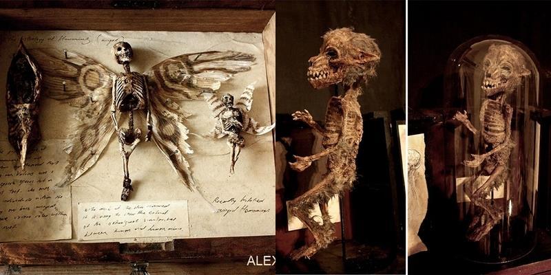 Phát hiện xác ướp của tiên, người sói, thậm chí cả người ngoài hành tinh