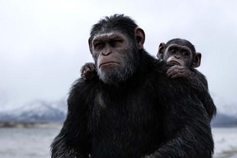 """Fox mở chiến dịch tranh giải Oscar cho """"Đại chiến hành tinh khỉ"""""""