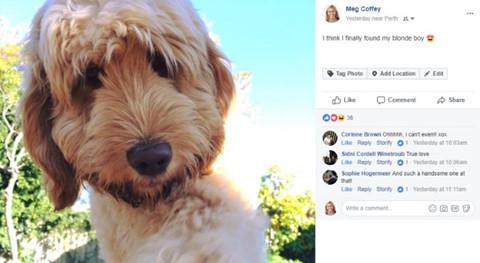 Vì sao ảnh đại diện của Facebook đổi sang dạng tròn?