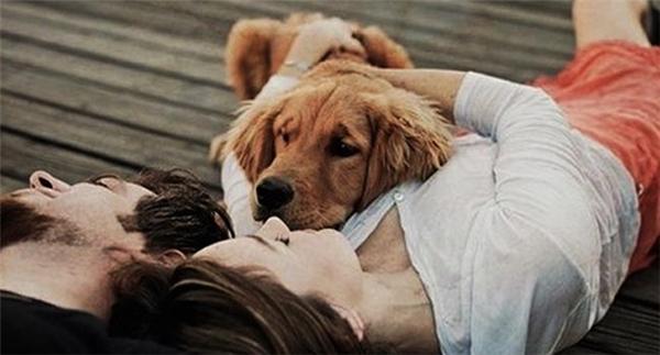 """Giận nhau chỉ vì một chú chó: Bài học lớn dành cho các cô nàng hay """"nhây"""""""