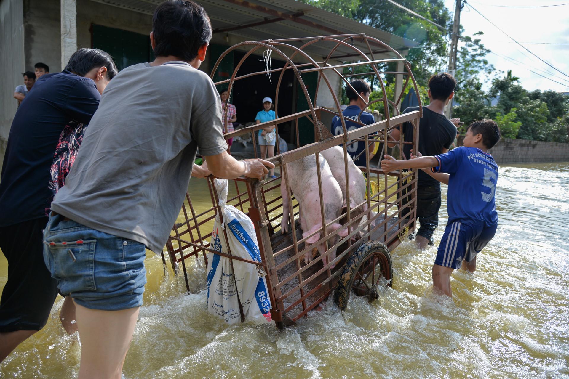 Cuộc sống đảo lộn vì nước lũ tràn vào nhà