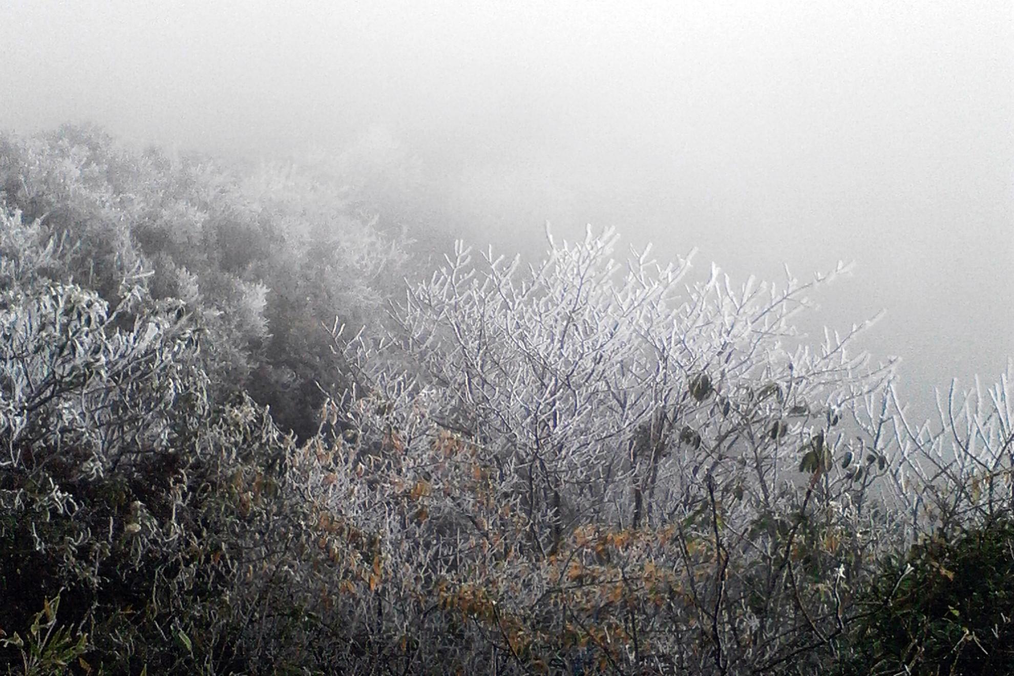 Không khí lạnh tăng cường, miền Bắc rét đậm tới gần Noel