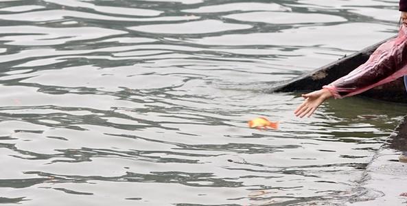 Thả cá tiễn ông Công ông Táo, một phụ nữ rơi xuống hồ tử vong