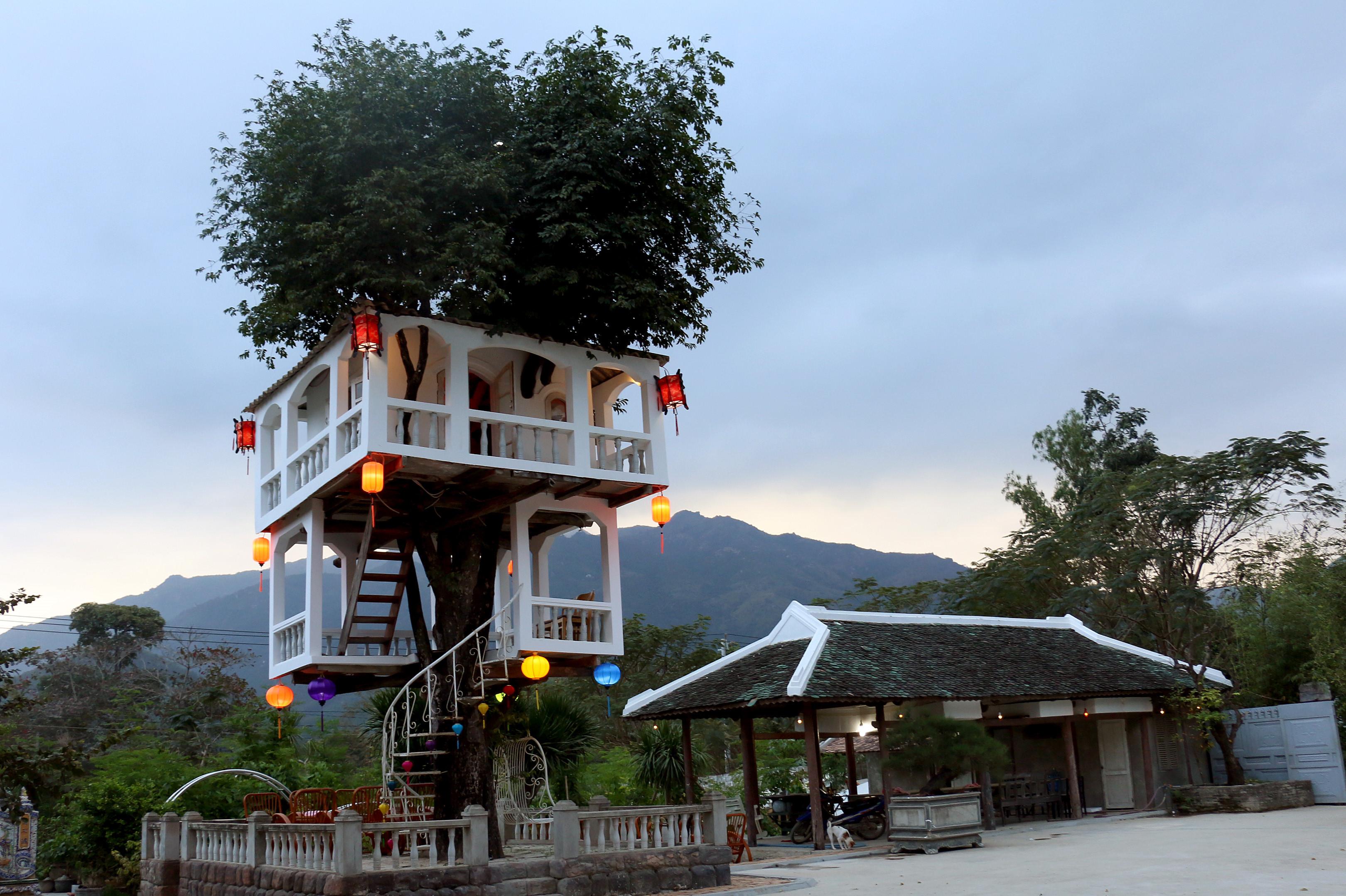 Ngôi nhà 2 tầng trên cây đứng vững sau cơn bão lịch sử