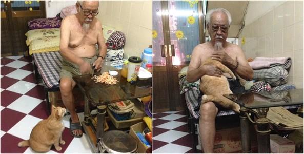 """Chùm ảnh """"ông nội và em mèo"""" khiến cộng đồng mạng thích thú"""