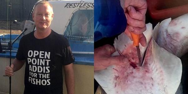 Ngư dân Australia đã cứu được 100 sinh mạng khỏi bụng cá mập đã chết