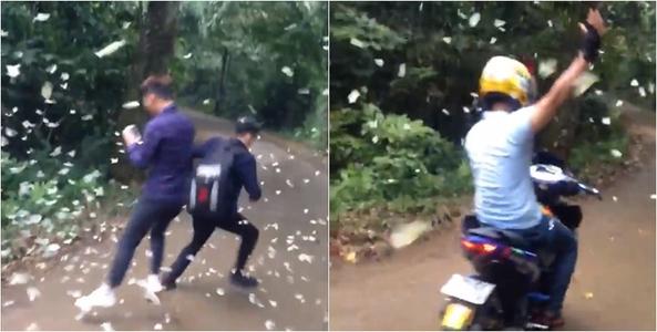Nhóm thanh niên vô ý thức giẫm lên bướm trắng Vườn Quốc gia Cúc Phương