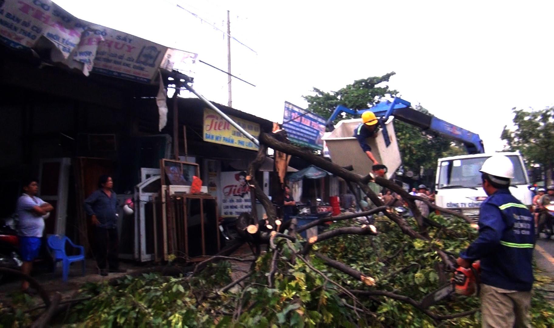 Nhà tốc mái, cây đổ la liệt sau trận dông lốc ở Sài Gòn