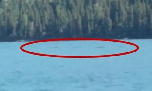 Sinh vật nghi thủy quái bơi dưới mặt hồ Trung Quốc