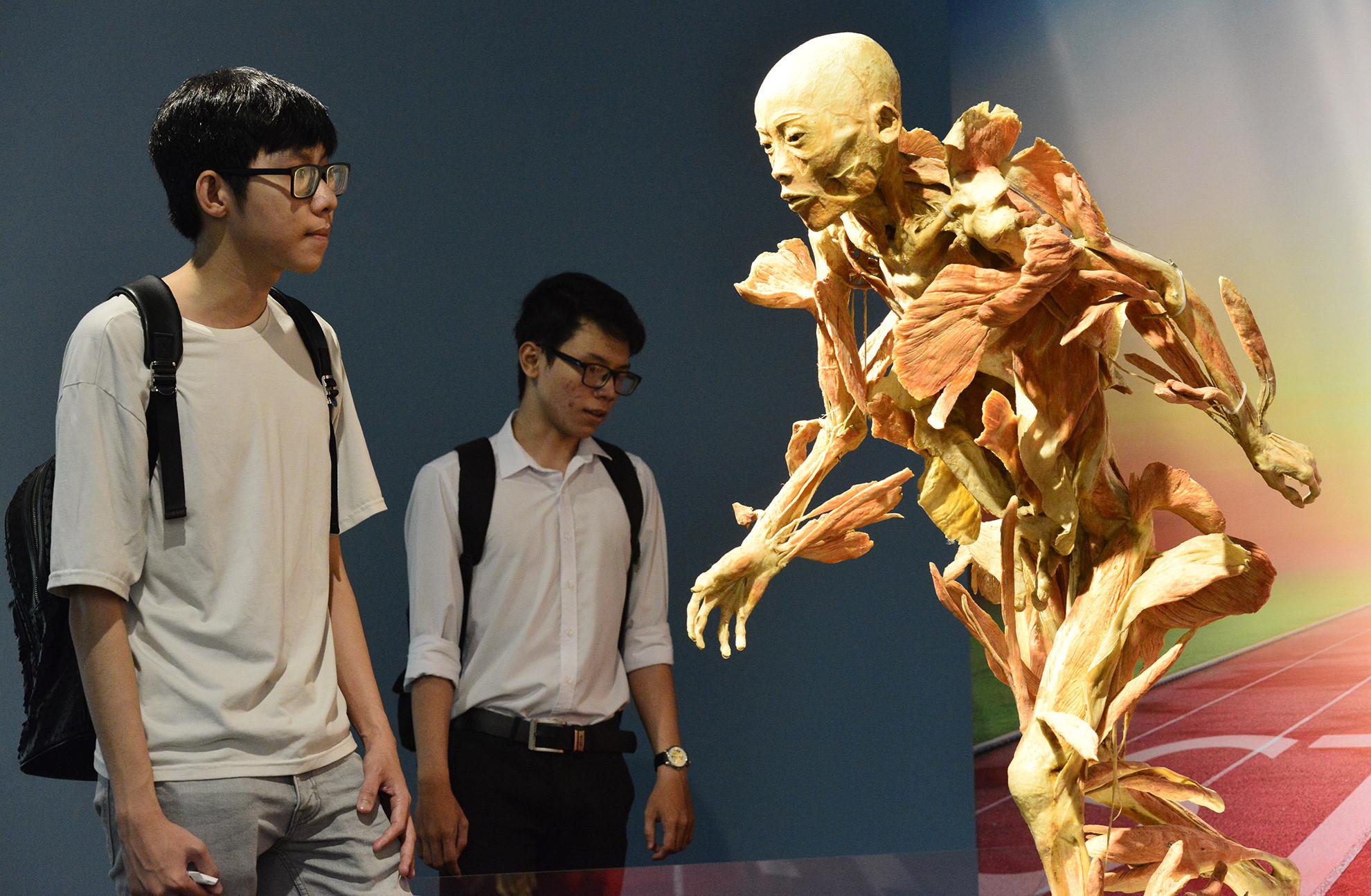 Triển lãm cơ thể người gây tranh cãi ở Sài Gòn?