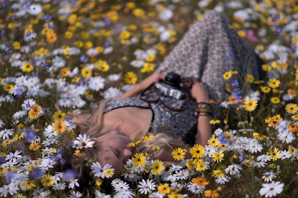 Biển hoa phủ kín hoang mạc ở Nam Phi