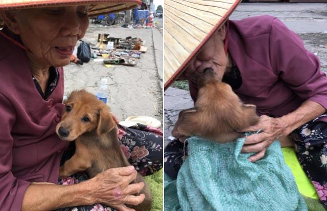 Chuyện bà cụ Sài Gòn nghèo phải bán chó và kẻ lợi dụng để 'câu like'