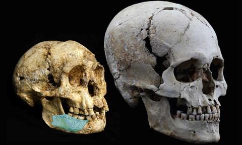 Phát hiện dấu vết lớp người cổ mới trong hang động Philippines