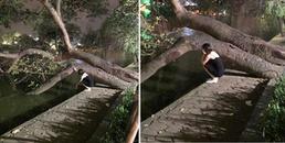 Cô gái uất ức ngồi chửi nhau với cái bóng của mình ở Hồ Gươm