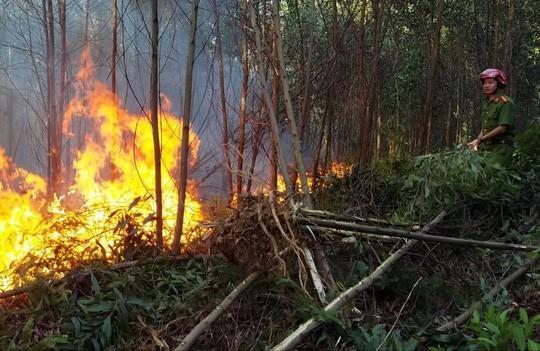 Rừng khắp nơi ở Thừa Thiên - Huế bị cháy