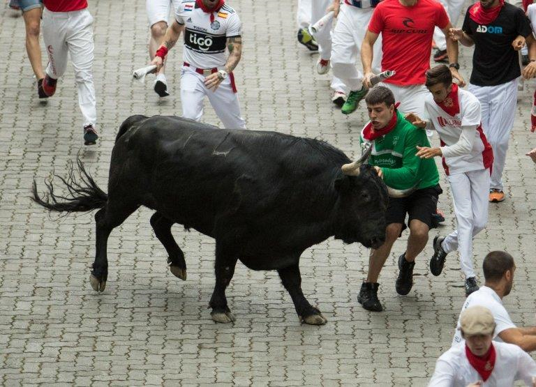 Hai người bị húc trong lễ hội đua bò ở Tây Ban Nha